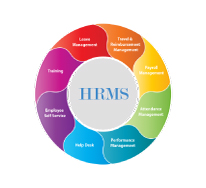 HRMS and Payroll Management Systems